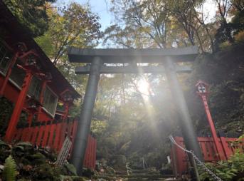 奥山権現 奥山愛宕神社