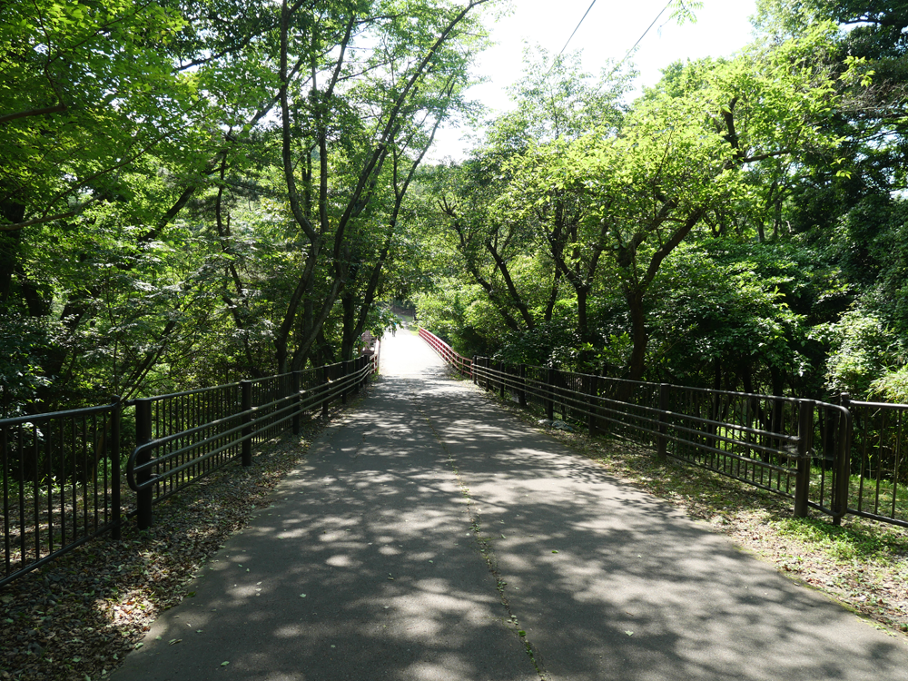 ダム周遊コース